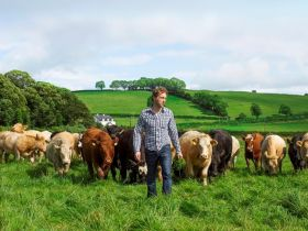 Bord Bia introduceert kwaliteitslabel Grass Fed Standard